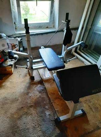 Ławka wielofunkcyjna do ćwiczeń marki Hertz