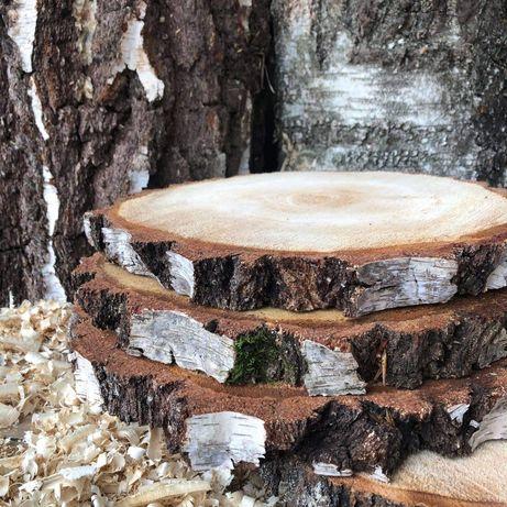 Plastry drewna z brzozy