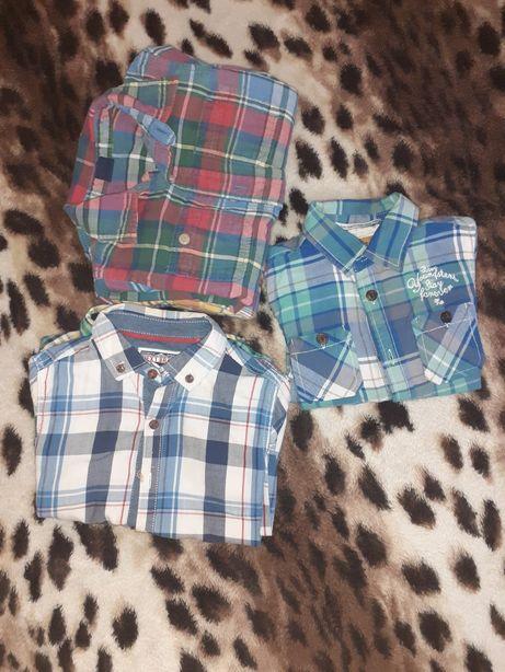 Рубашка baby gap , junior , tu, next, prenatal