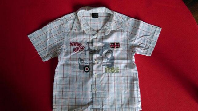 Koszula dla chłopca bawełniana NEXT ok. 2 latka