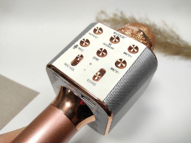 Есть Самовывоз. Оригинал. Беспроводной караоке микрофон Wster WS 1688