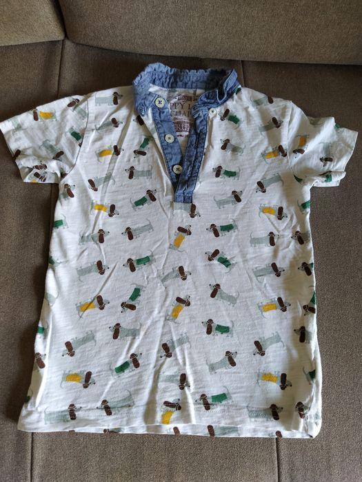 Bluzeczki polo kołnierzyk 3szt Dopiewiec - image 1