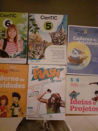 Cadernos de atividades diversos 5 e 6 ano  Manual de Educação Tecnológ