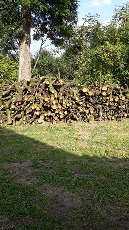 Drewno opałowe z wiśni