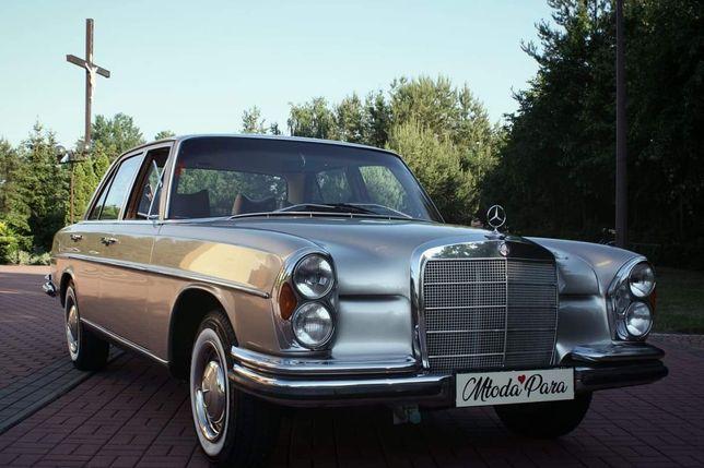 Mercedes W108 Auto do ślubu i imprezy okolicznościowe