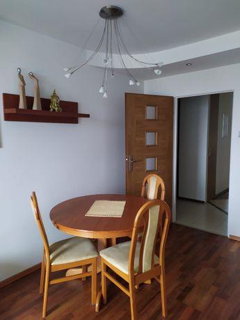 Mieszkanie po remoncie do wynajęcia od zaraz (2 pokoje)