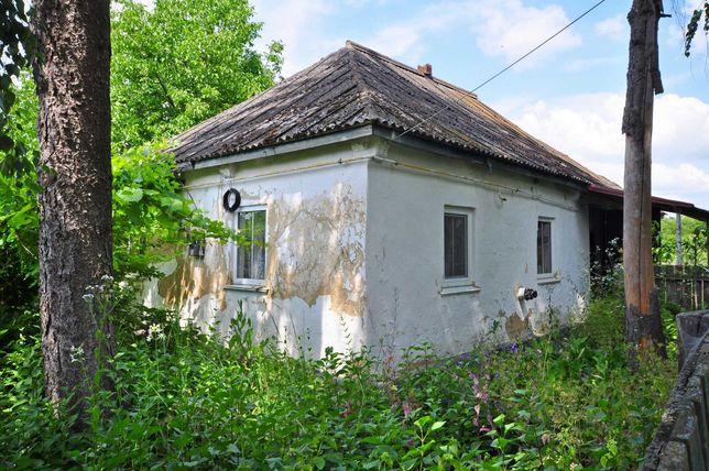 Дом с удобствами в центре с. Бушево, прямое сообщение с Киевом