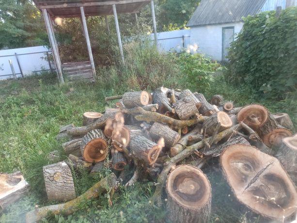 Продам дрова, самовивіз