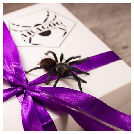 бокс набор подарок крестнику племяннику мужу папе паук птицеед животно