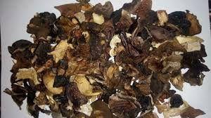 Сушені гриби