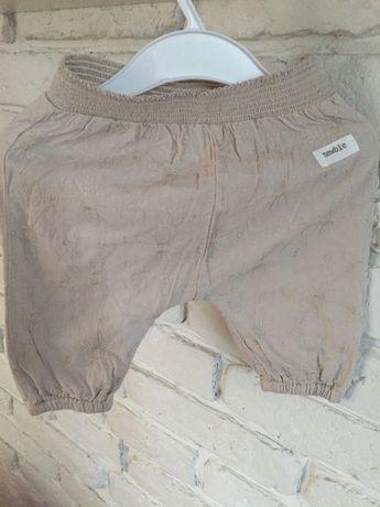 Spodnie, Kappahl, Newbie, 56