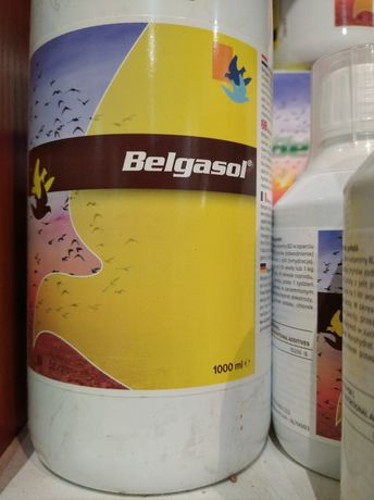 Belgica De Weerd Belgasol elektrolity dla gołębi kanarek