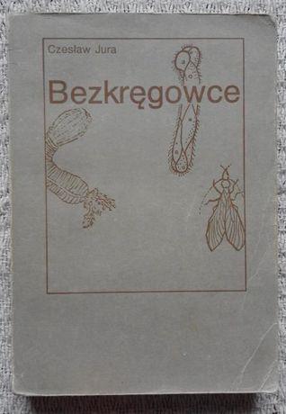 """""""Bezkręgowce. Zarys morfologii, systematyki, filogenezy."""" Czesław Jura"""