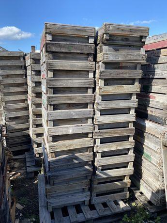 Skrzynki ogrodnicze 75x50 cm - drewniane, dno z siatki - ok. 1000 szt