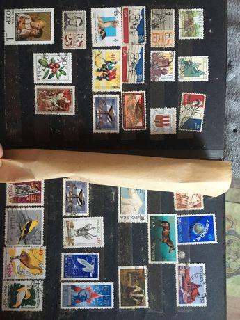 Kolekcja znaczków