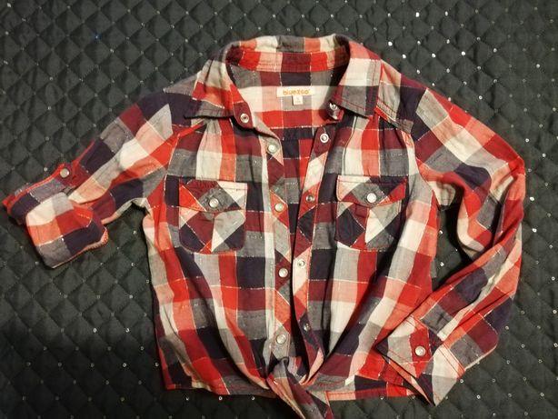 Koszula w kratę bluezoo r. 110  5 lat