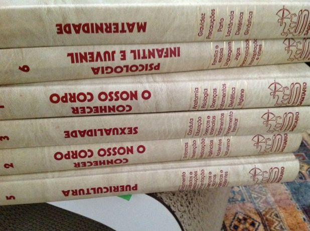 Coleção de livros 6 volumes ( o livro do casal)