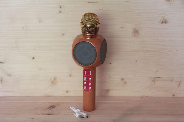 Микрофон караоке DM Karaoke 1816
