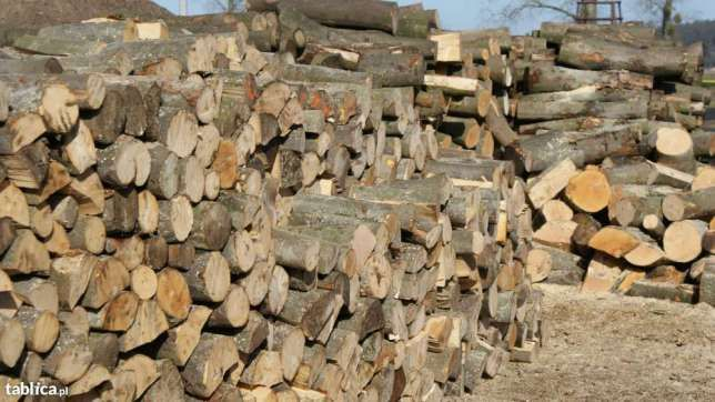 Drewno kominkowe sezonowane , gatunki do wyboru