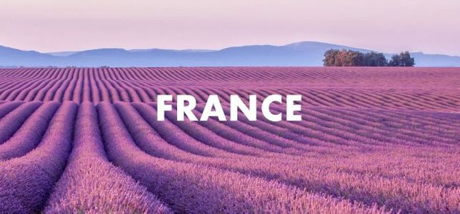 Французский язык. Репетитор. Уроки. (В том числе онлайн)
