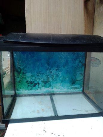 aquário completo ,luz ,bomba agua resistência