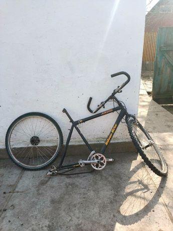 Горний велосипед Ардис (Ardis)