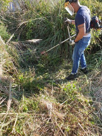 Limpezas de terrenos matas corte de arvores jardins etc