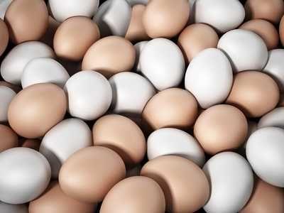 Jajka od własnych kur