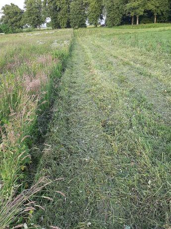 Mulczerowanie koszenie łąk i nieużytków