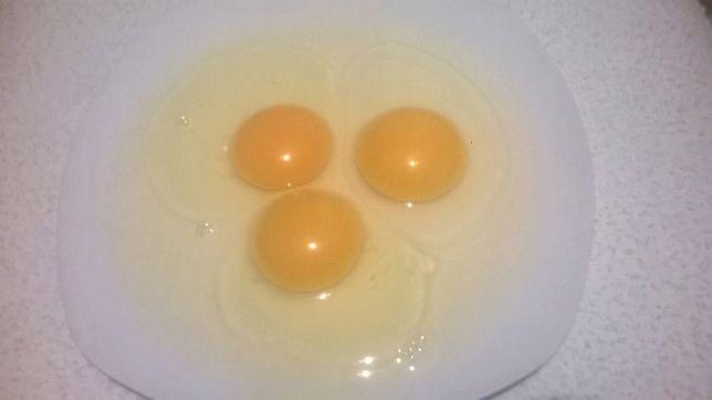 Jaja z wolnego wybiegu-dostawa w cenie*, 8,00 zł za 15 szt.