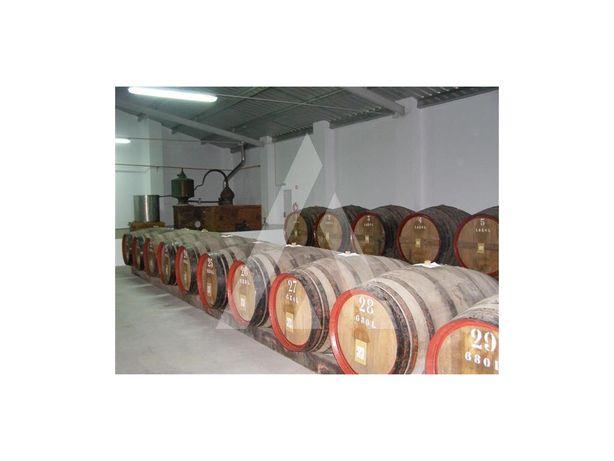 Caves, Adega de armazenagem e comercialização de vinhos -...