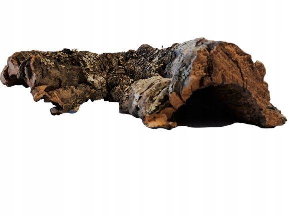 Kora Dębu Korkowego Jaskinia L 15x8x15cm TERRARIUM Kurier Wysyłka
