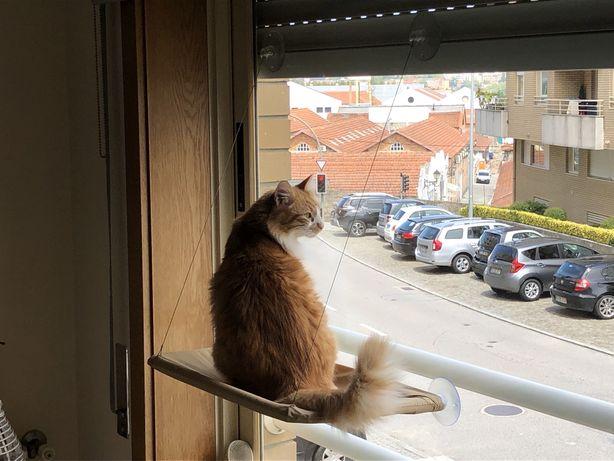 Em stock: Cama de janela para gatos - promoção fim de semana