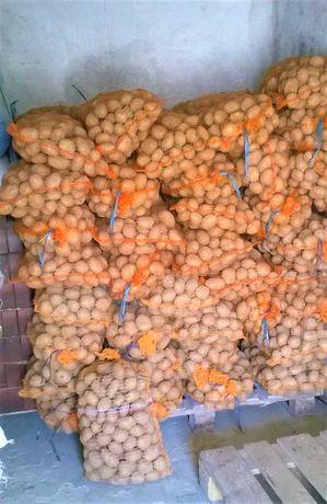 Ziemniak Denar / worki 15kg