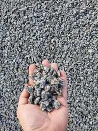 Grys granitowy 8-16 mm – kamień ogrodowy
