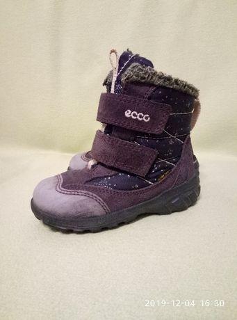 Зимние ботинки Ecco 24 размер на девочку