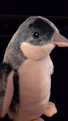 Nowy pingwin z Nowej Zelandii