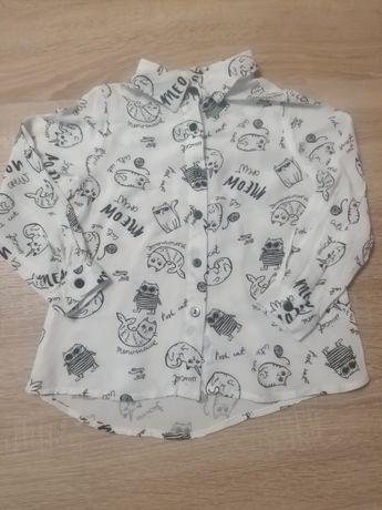 Koszula bluzka koty Reserved