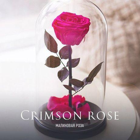 Роза в стеклянной колбе (Коробка,Гравировка) .ХИТ 2020 года
