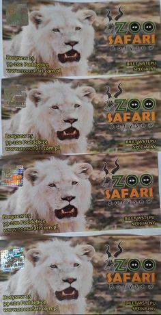 Bilety do Zoo Safari w Borysewie
