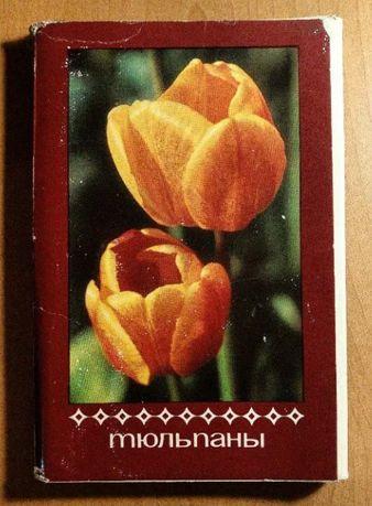 Открытки тюльпаны и открытка