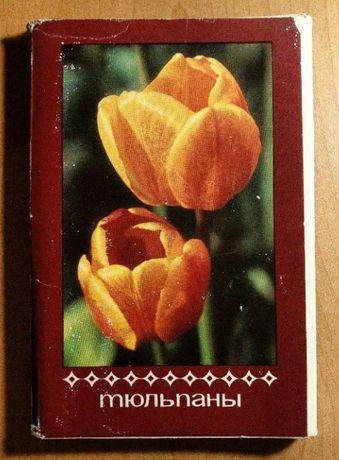"""Открытки тюльпаны и открытка """"С Новым годом!"""""""