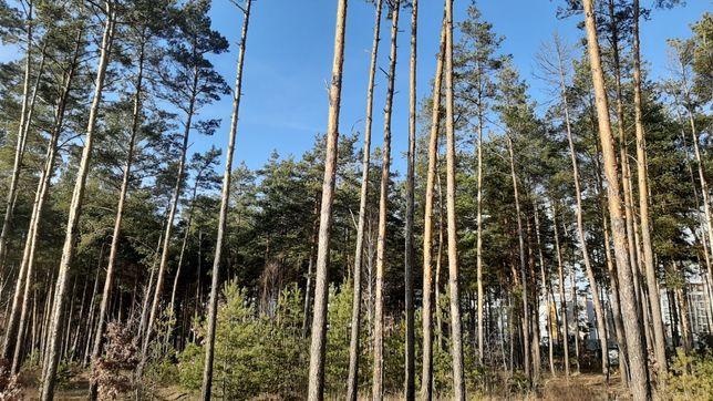 Шикарный  участок в лесу среди элитных котеджей Буча Лесная.