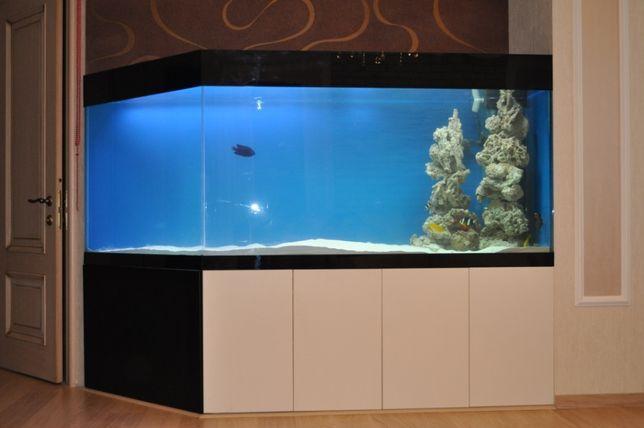 Изготовление и ремонт аквариумов.