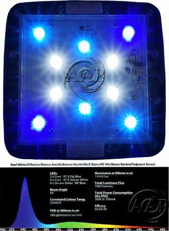 Iluminação LED aquário de água salgada TMC