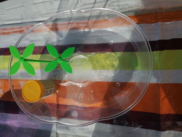 Aquário para tartaruga e comida usada umas semanas
