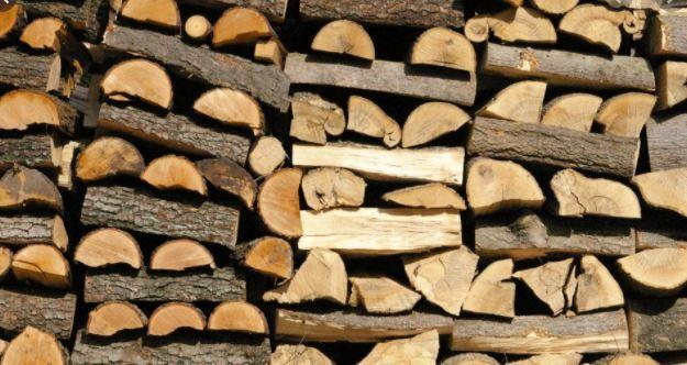 drewno kominkowe Malbork