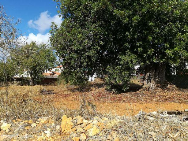 Terreno para Venda em Almádena