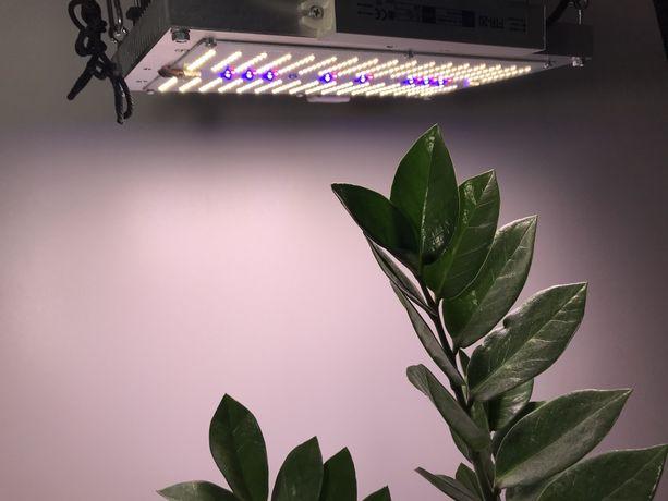 Лампа led , Cree , Samsung , лампа для растений