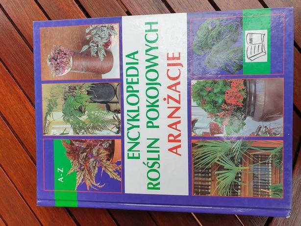 Encyklopedia roślin pokojowych. Aranżacje.